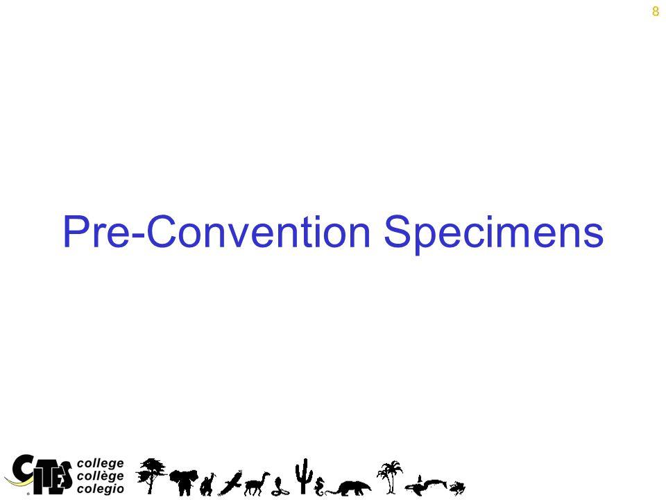 8 Pre-Convention Specimens 8
