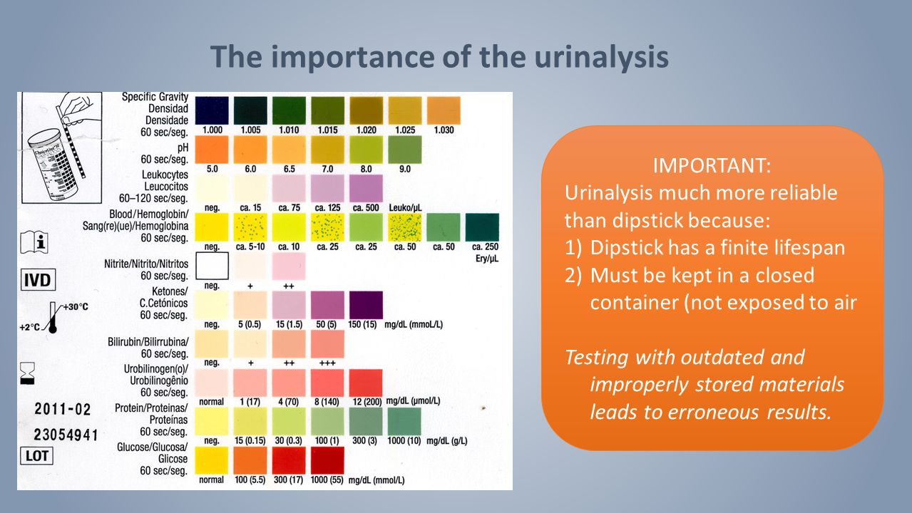 The importance of the urinalysis IMPORTANT: Urinalysis much more reliable than dipstick because: 1)Dipstick has a finite lifespan 2)Must be kept in a closed container (not exposed to air Testing with outdated and improperly stored materials leads to erroneous results.