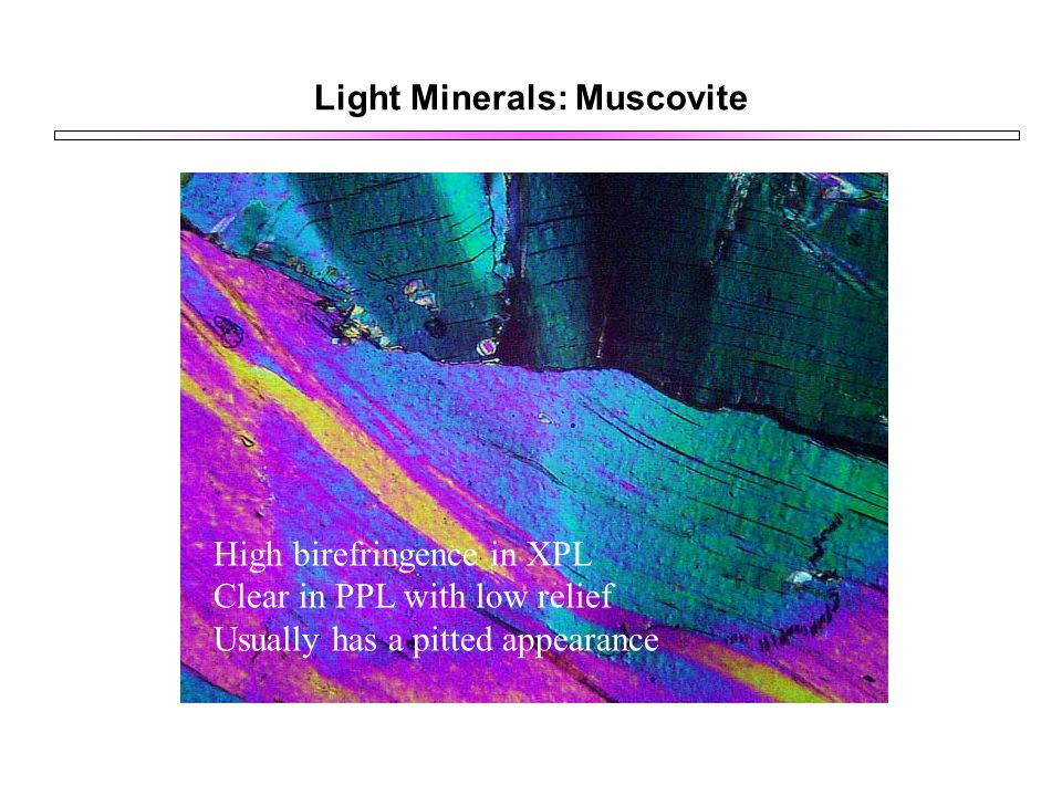 Light Minerals: Muscovite High birefringence in XPL Clear in PPL with low relief Usually has a pitted appearance