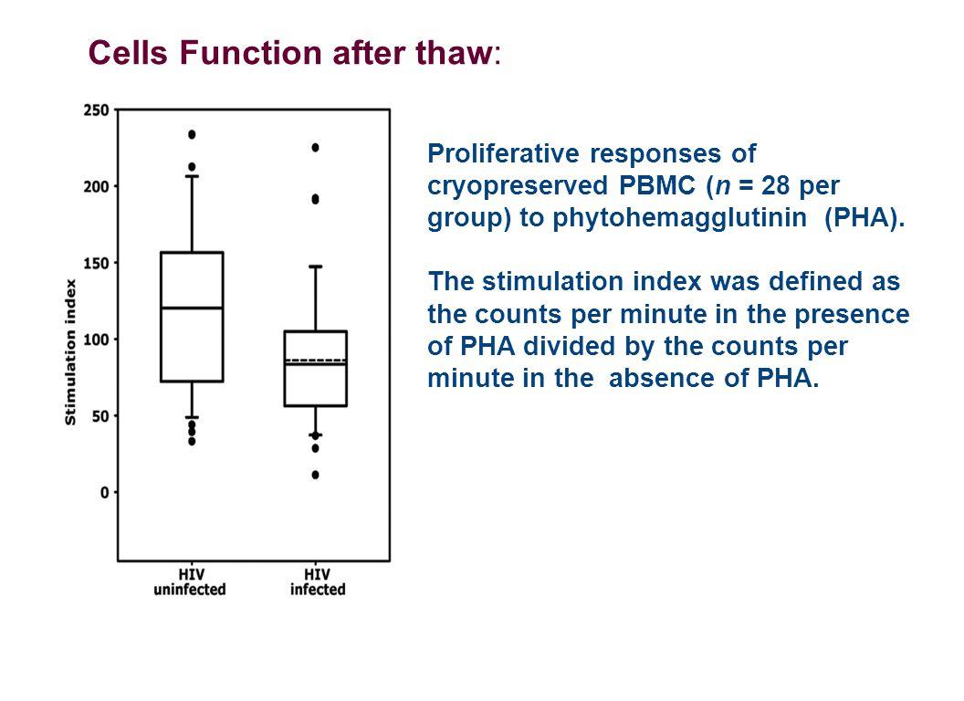 Proliferative responses of cryopreserved PBMC (n = 28 per group) to phytohemagglutinin (PHA).