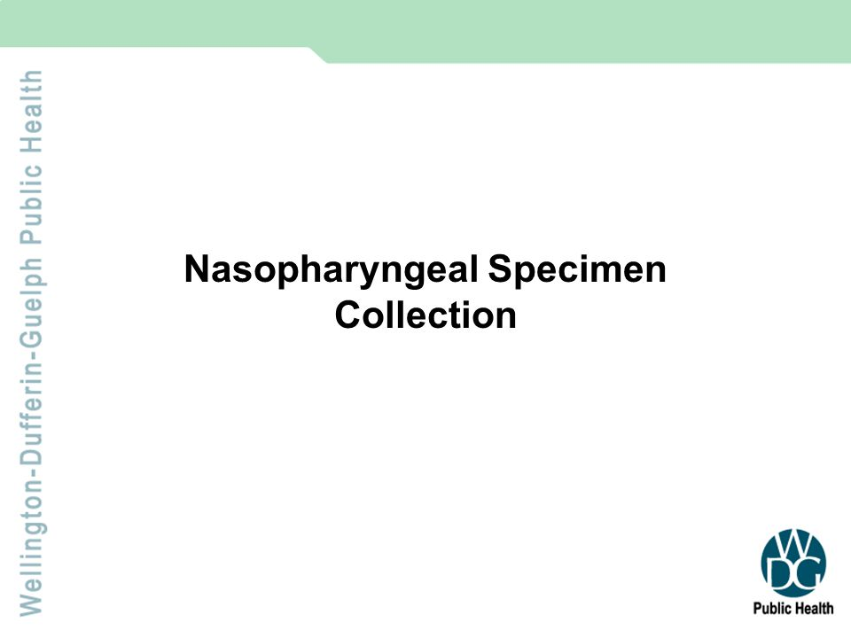 Specimen Collection Before starting, ensure swab collection equipment is on hand.
