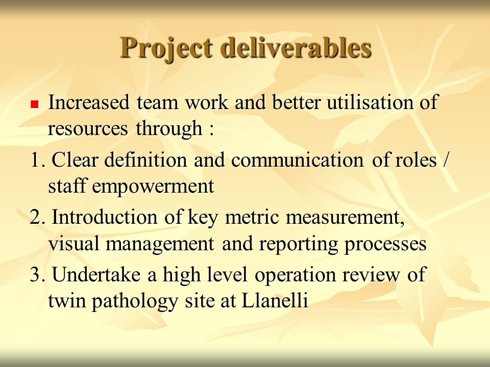 Project deliverables Increased team work and better utilisation of resources through : Increased team work and better utilisation of resources through