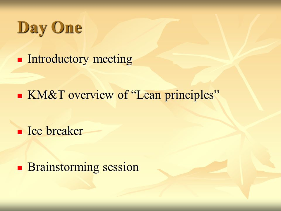 "Day One Introductory meeting Introductory meeting KM&T overview of ""Lean principles"" KM&T overview of ""Lean principles"" Ice breaker Ice breaker Brains"