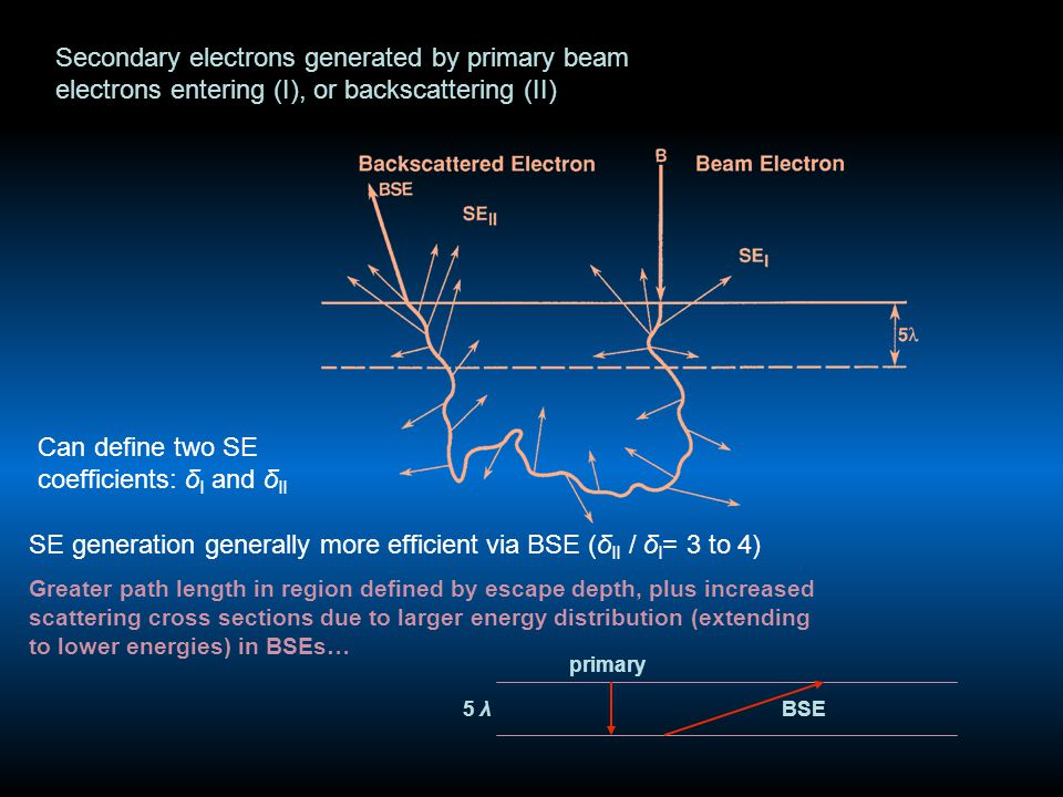 Secondary electrons generated by primary beam electrons entering (I), or backscattering (II) Can define two SE coefficients: δ I and δ II SE generation generally more efficient via BSE (δ II / δ I = 3 to 4) Greater path length in region defined by escape depth, plus increased scattering cross sections due to larger energy distribution (extending to lower energies) in BSEs… primary BSE5 λ