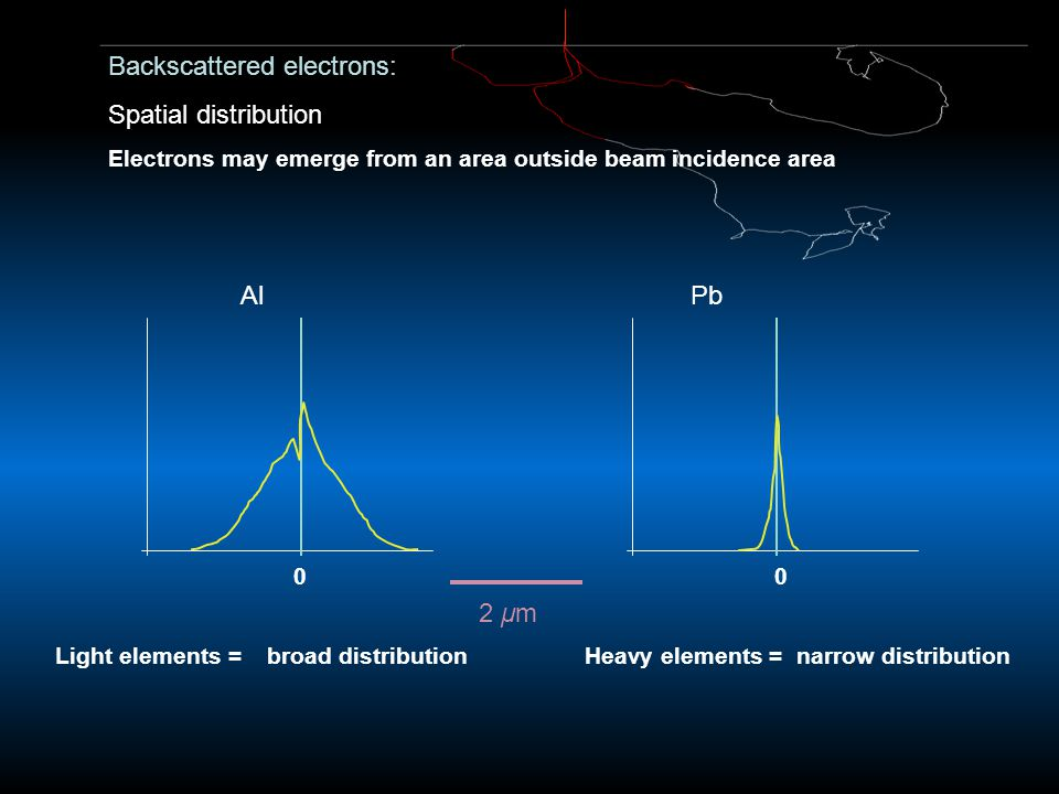 Backscattered electrons: Spatial distribution Electrons may emerge from an area outside beam incidence area AlPb 0 Light elements =broad distributionH