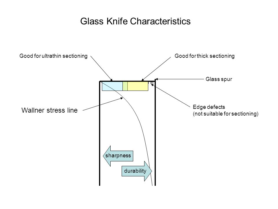 sharpness durability Good for ultrathin sectioningGood for thick sectioning Glass spur Edge defects (not suitable for sectioning) Glass Knife Characte