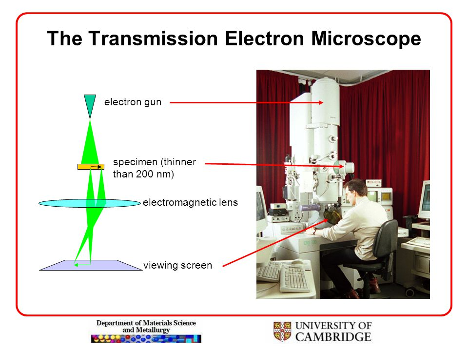 The Transmission Electron Microscope electron gun specimen (thinner than 200 nm) electromagnetic lens viewing screen