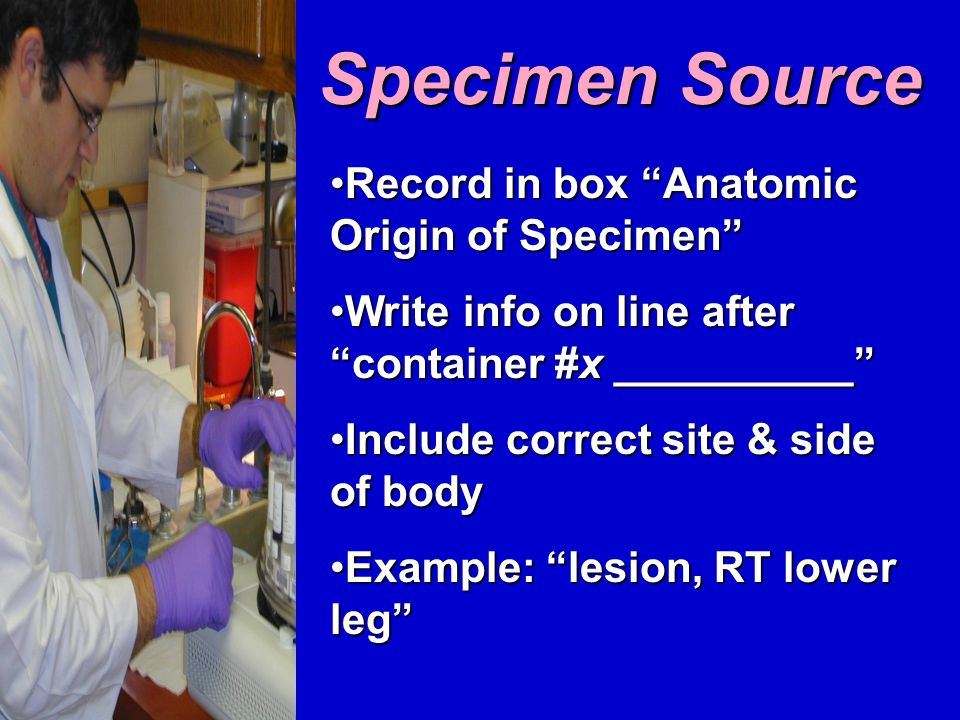 Specimen Source Record in box Anatomic Origin of Specimen Record in box Anatomic Origin of Specimen Write info on line after container #x __________ Write info on line after container #x __________ Include correct site & side of bodyInclude correct site & side of body Example: lesion, RT lower leg Example: lesion, RT lower leg
