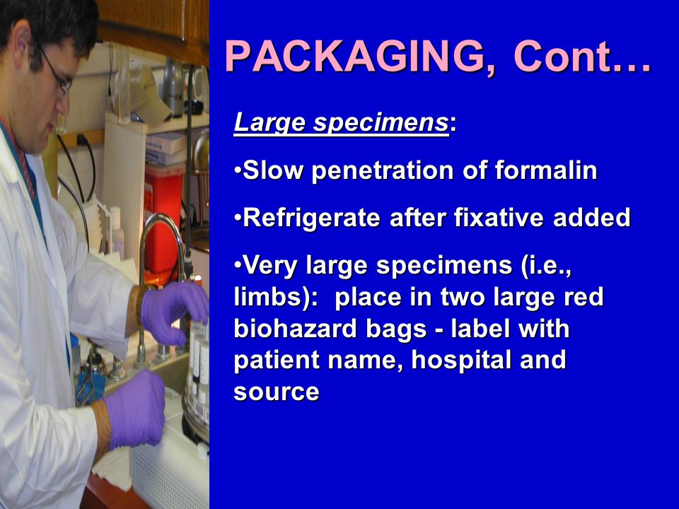 PACKAGING, Cont… Large specimens: Slow penetration of formalinSlow penetration of formalin Refrigerate after fixative addedRefrigerate after fixative added Very large specimens (i.e., limbs): place in two large red biohazard bags - label with patient name, hospital and sourceVery large specimens (i.e., limbs): place in two large red biohazard bags - label with patient name, hospital and source