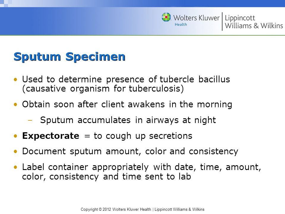 Copyright © 2012 Wolters Kluwer Health   Lippincott Williams & Wilkins Sputum Specimen Used to determine presence of tubercle bacillus (causative orga