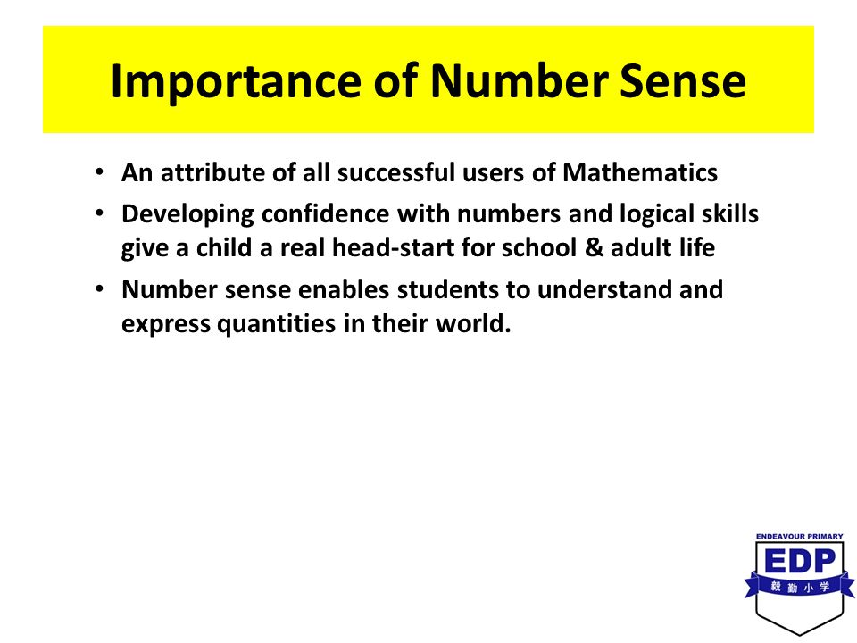 Importance of Number Sense An attribute of all successful users of Mathematics Developing confidence with numbers and logical skills give a child a re