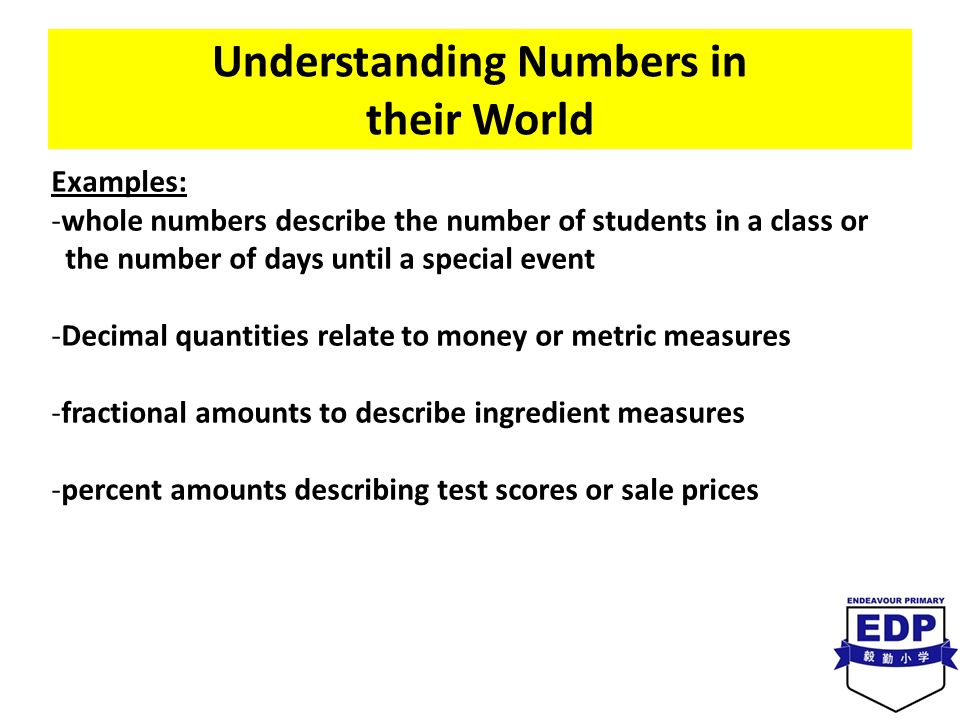Understanding Numbers in their World Examples: -whole numbers describe the number of students in a class or the number of days until a special event -Decimal quantities relate to money or metric measures -fractional amounts to describe ingredient measures -percent amounts describing test scores or sale prices