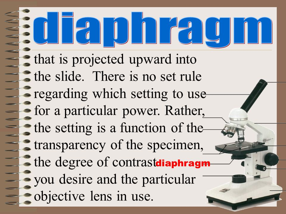 diaphragm that is projected upward into the slide. There is no set rule regarding which setting to use for a particular power. Rather, the setting is
