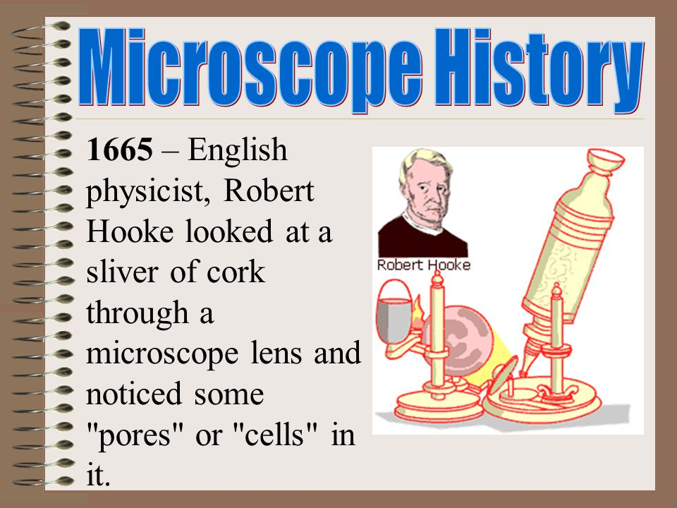 1665 – English physicist, Robert Hooke looked at a sliver of cork through a microscope lens and noticed some