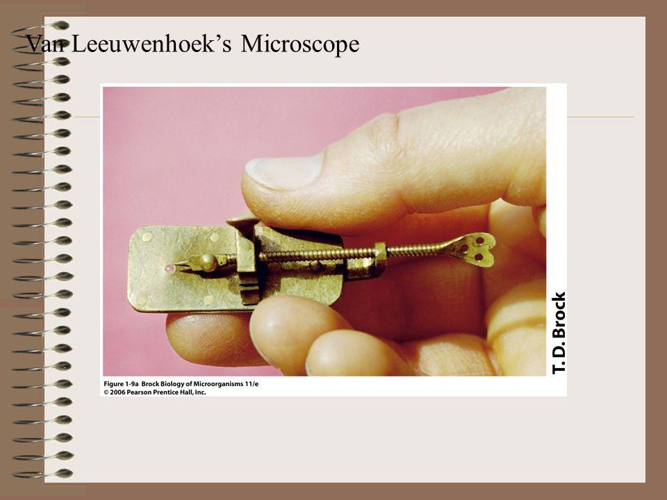 Van Leeuwenhoek's Microscope