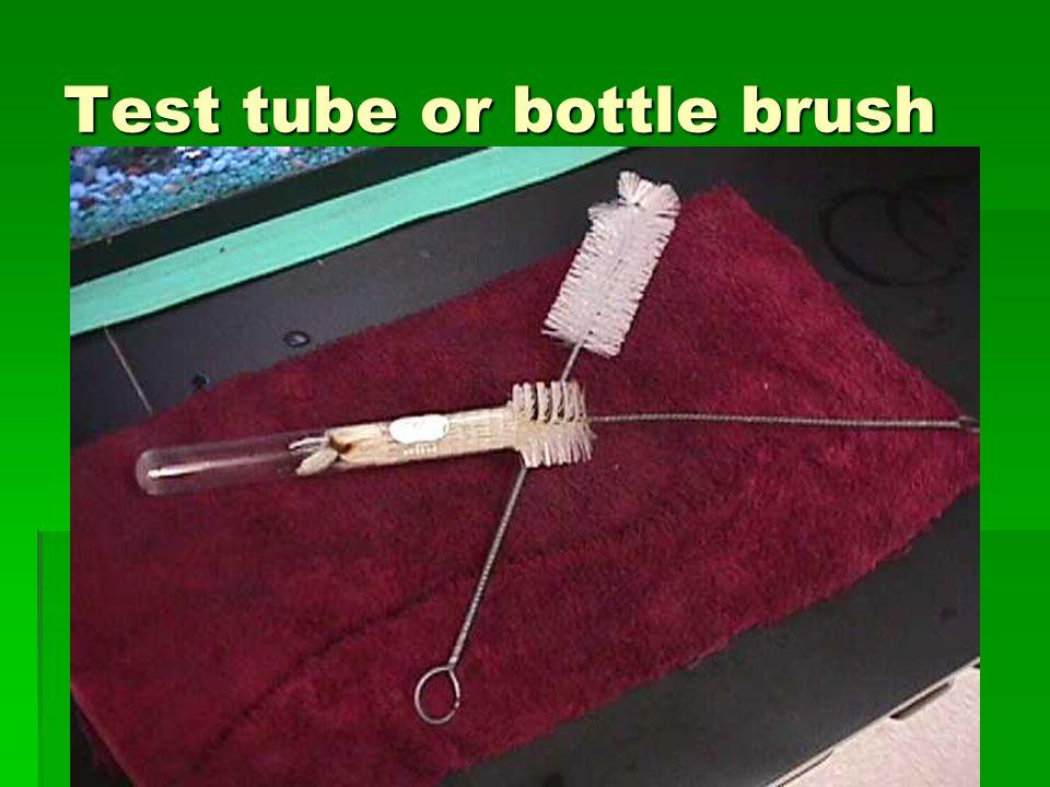 Test tube or bottle brush