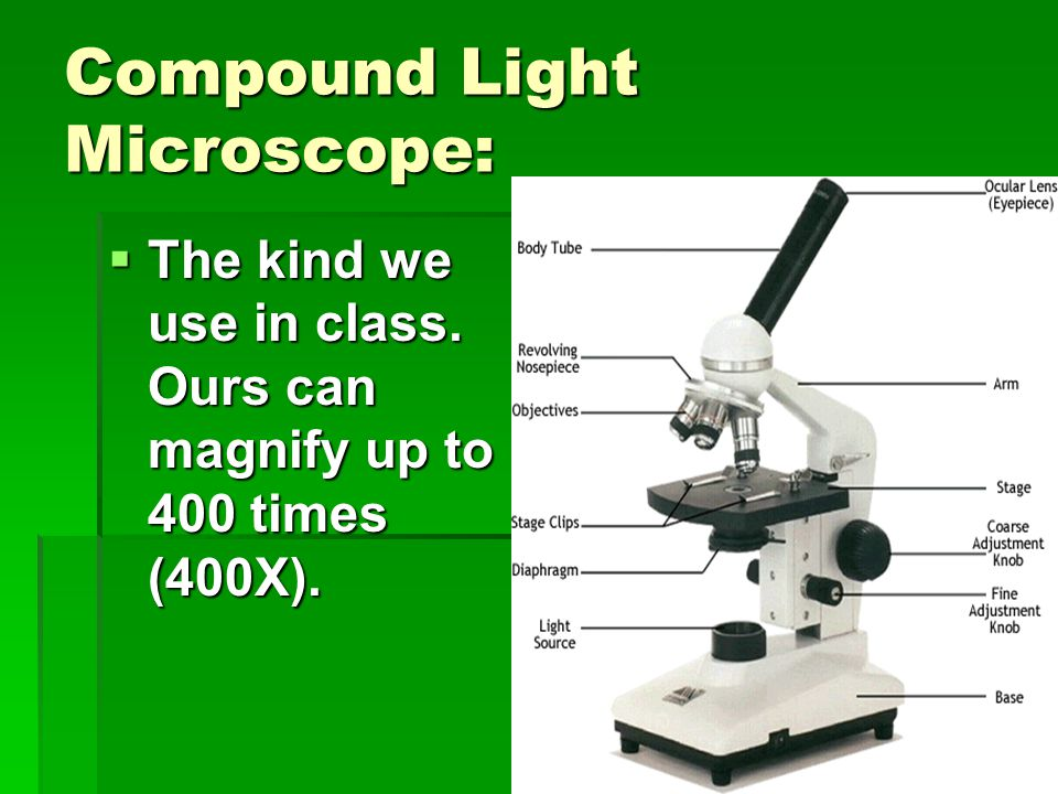 Compound Light Microscope:  The kind we use in class. Ours can magnify up to 400 times (400X).