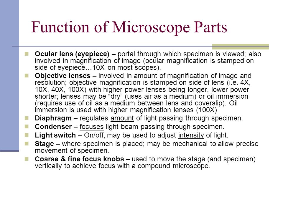 Function of Microscope Parts Ocular lens (eyepiece) – portal through which specimen is viewed; also involved in magnification of image (ocular magnification is stamped on side of eyepiece…10X on most scopes).