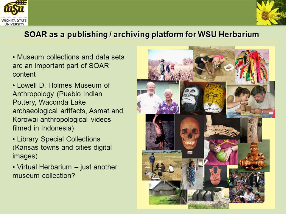 SOAR as a publishing / archiving platform for WSU Herbarium Virtual Herbarium is NOT just another museum collection: -- multiple specialized database management systems (see incomplete & outdated sample on the right) -- variety of complex web sites & portals created by large universities, museums & centers -- subject specific metadata (Darwin Core) -- nobody before (at the best of my knowledge) used DSpace as front & back end for Virtual Herbaria http://www.virtualherbarium.org/vh/othersystems.html