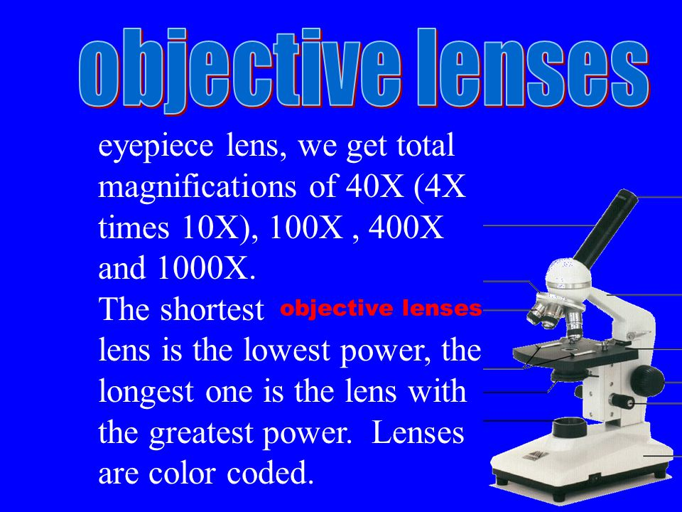 objective lenses eyepiece lens, we get total magnifications of 40X (4X times 10X), 100X, 400X and 1000X.