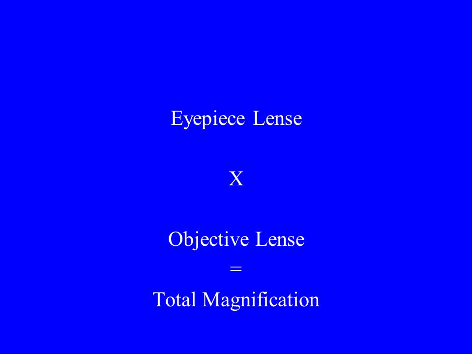 Eyepiece Lense X Objective Lense = Total Magnification