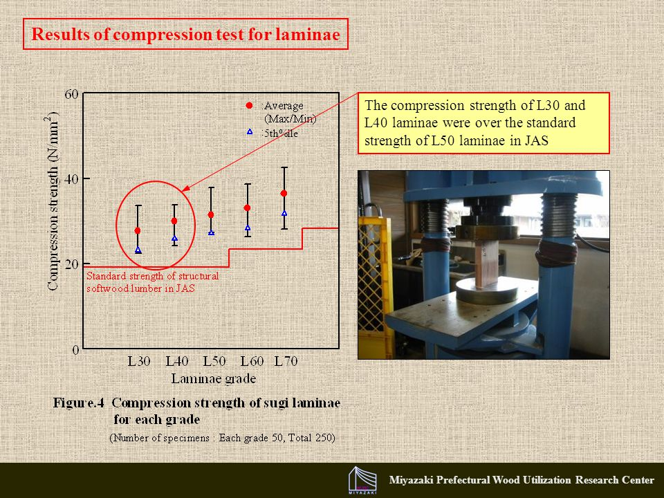Miyazaki Prefectural Wood Utilization Research Center Results of compression test for laminae The compression strength of L30 and L40 laminae were over the standard strength of L50 laminae in JAS 5th%ile