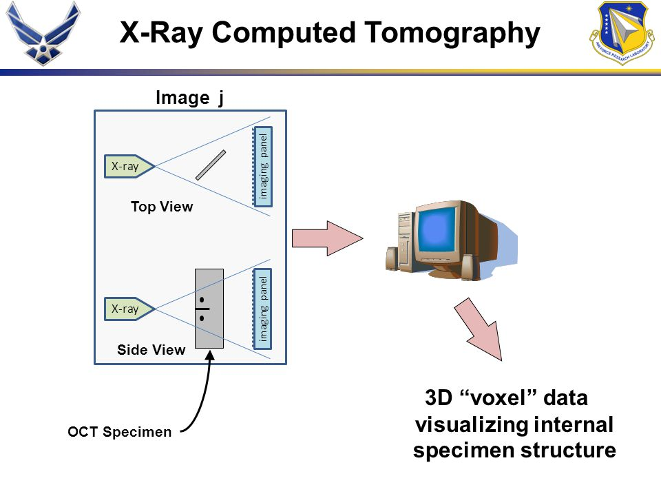 "imaging panel X-ray Top View imaging panel X-ray Side View Image j X-Ray Computed Tomography OCT Specimen 3D ""voxel"" data visualizing internal specime"
