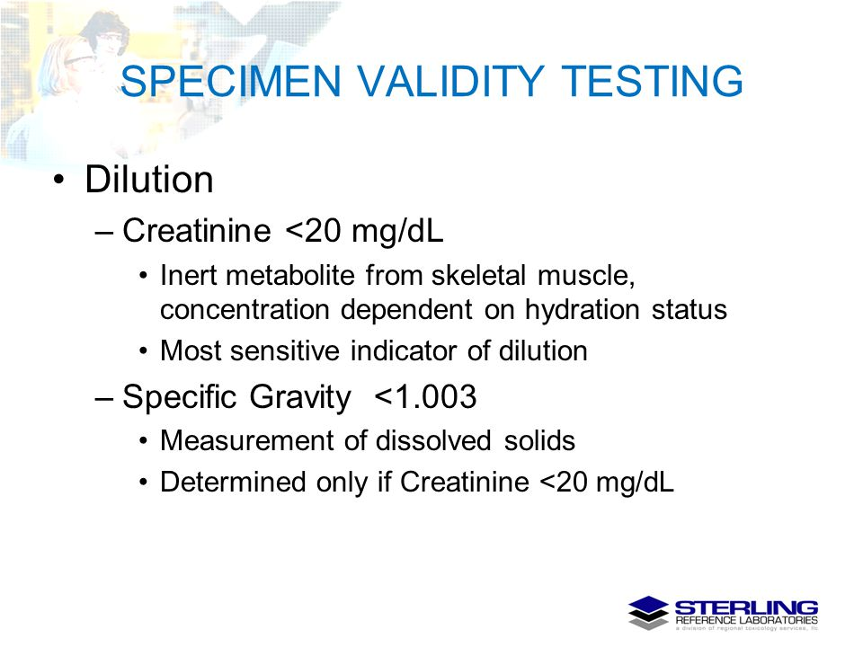 SPECIMEN VALIDITY TESTING Dilution –Creatinine <20 mg/dL Inert metabolite from skeletal muscle, concentration dependent on hydration status Most sensi