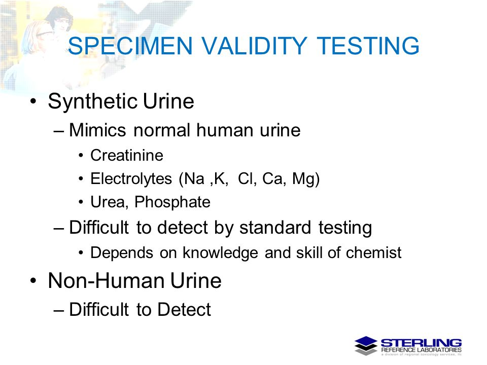 SPECIMEN VALIDITY TESTING Synthetic Urine –Mimics normal human urine Creatinine Electrolytes (Na,K, Cl, Ca, Mg) Urea, Phosphate –Difficult to detect b