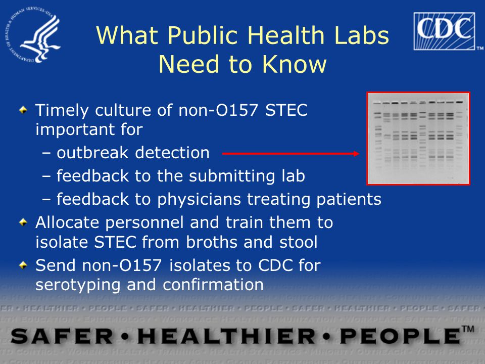 What Public Health Labs Need to Know Timely culture of non-O157 STEC important for –outbreak detection –feedback to the submitting lab –feedback to physicians treating patients Allocate personnel and train them to isolate STEC from broths and stool Send non-O157 isolates to CDC for serotyping and confirmation