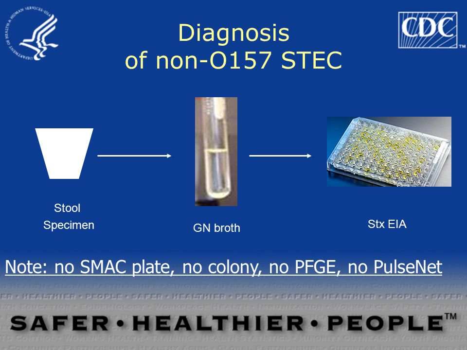 Diagnostic methodology challenges Non-O157 STEC –No useful isolation medium is available –Look like normal E.