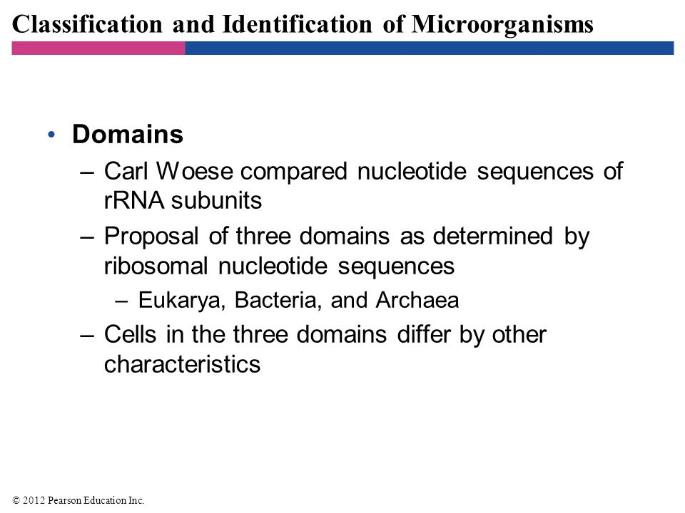 Classification and Identification of Microorganisms Domains –Carl Woese compared nucleotide sequences of rRNA subunits –Proposal of three domains as d