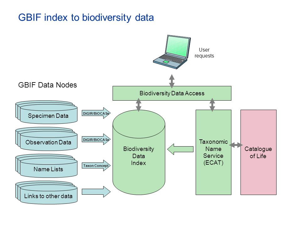 GBIF index to biodiversity data Catalogue of Life Biodiversity Data Access Biodiversity Data Index Taxonomic Name Service (ECAT) User requests GBIF Da