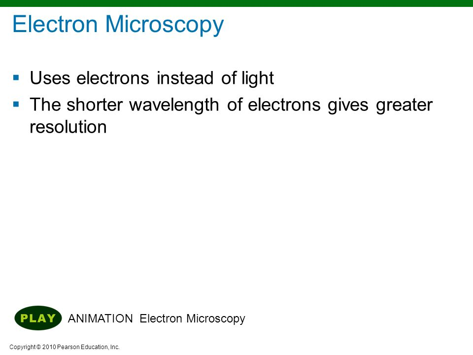 Copyright © 2010 Pearson Education, Inc.  Uses electrons instead of light  The shorter wavelength of electrons gives greater resolution ANIMATION El