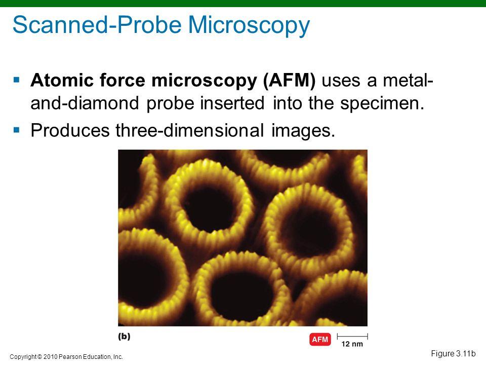 Copyright © 2010 Pearson Education, Inc. Figure 3.11b Scanned-Probe Microscopy  Atomic force microscopy (AFM) uses a metal- and-diamond probe inserte