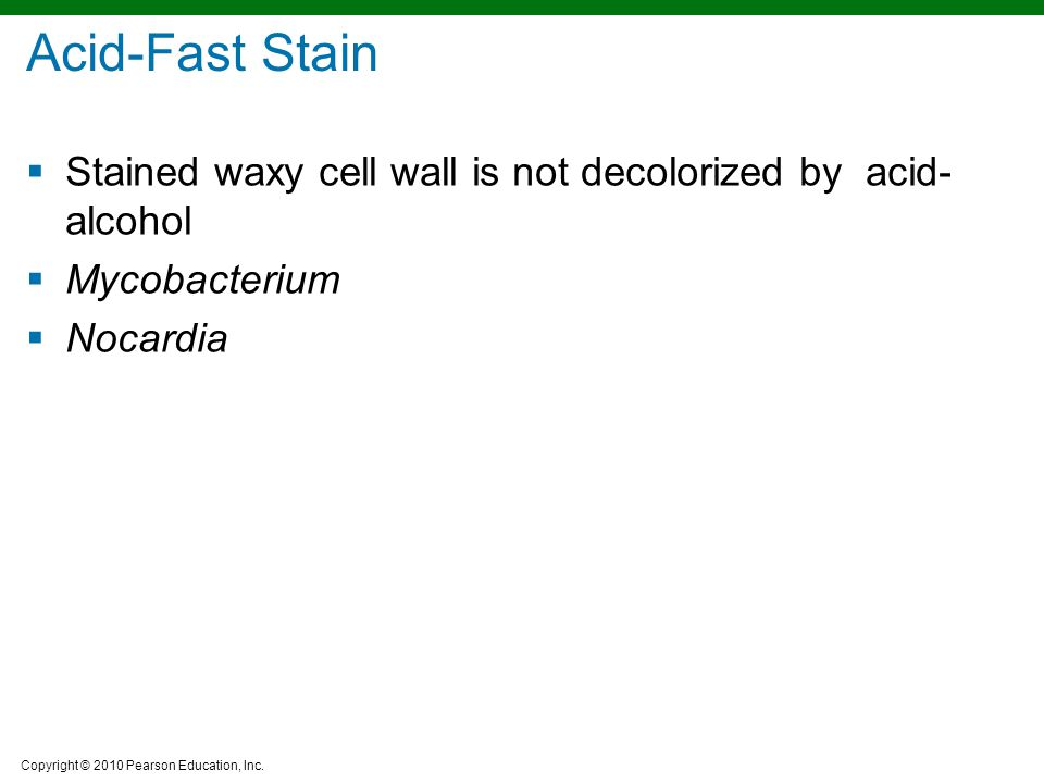Copyright © 2010 Pearson Education, Inc. Acid-Fast Stain  Stained waxy cell wall is not decolorized by acid- alcohol  Mycobacterium  Nocardia