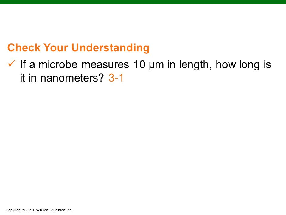 Copyright © 2010 Pearson Education, Inc. Check Your Understanding If a microbe measures 10 μm in length, how long is it in nanometers? 3-1