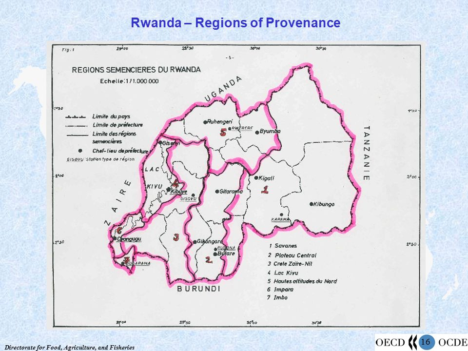 Directorate for Food, Agriculture, and Fisheries 16 Rwanda – Regions of Provenance