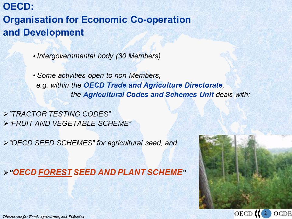 Directorate for Food, Agriculture, and Fisheries 2 OECD: Organisation for Economic Co-operation and Development Intergovernmental body (30 Members) So