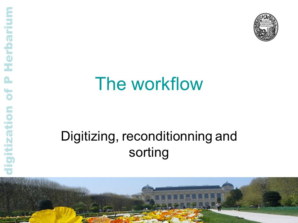Rapid digitization of P Herbarium The workflow Digitizing, reconditionning and sorting