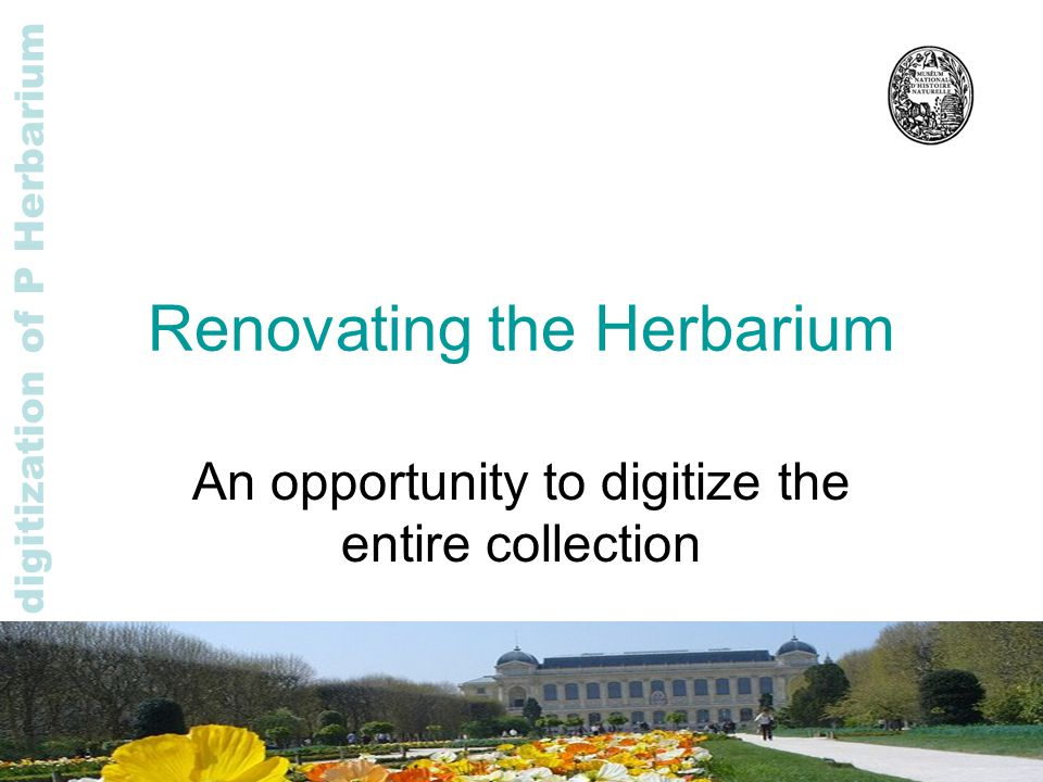 Rapid digitization of P Herbarium Renovating the Herbarium An opportunity to digitize the entire collection