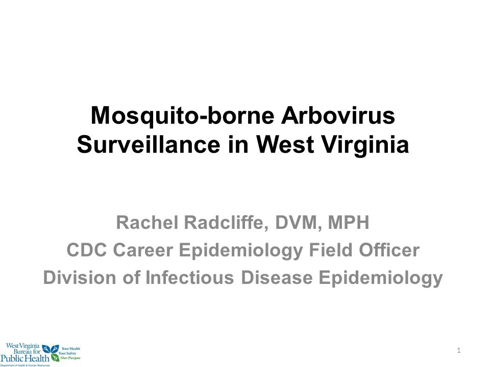 Mosquito-borne Arbovirus Surveillance in West Virginia Rachel Radcliffe, DVM, MPH CDC Career Epidemiology Field Officer Division of Infectious Disease Epidemiology 1
