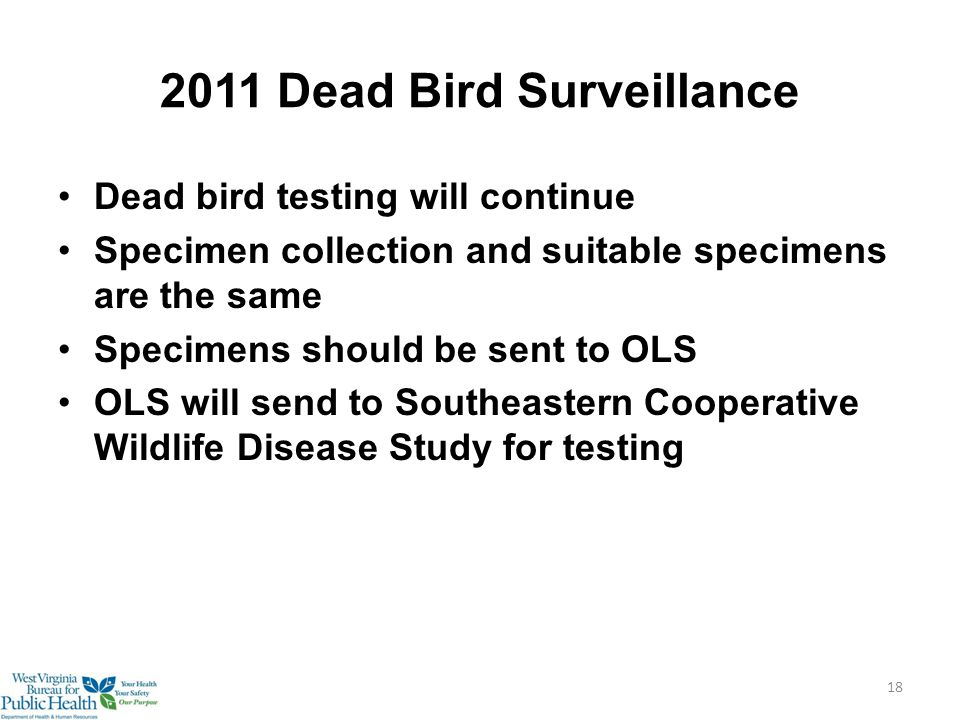 2011 Dead Bird Surveillance Dead bird testing will continue Specimen collection and suitable specimens are the same Specimens should be sent to OLS OLS will send to Southeastern Cooperative Wildlife Disease Study for testing 18