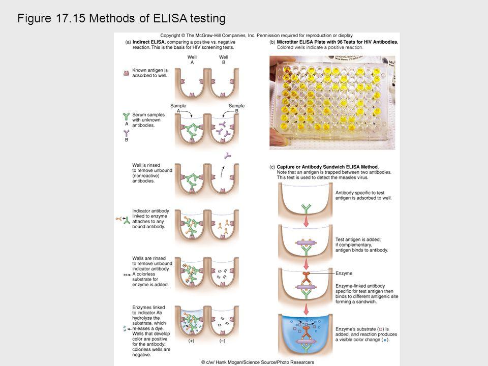 Figure 17.15 Methods of ELISA testing