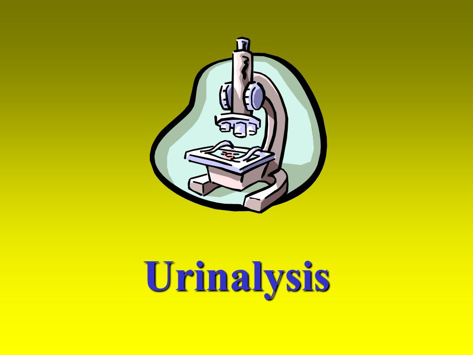 Chemistry The chemical components provide information used to diagnose problems such as diabetes, renal failure, liver infections, muscle disease, inflammation of the urinary tract, and ketosis.