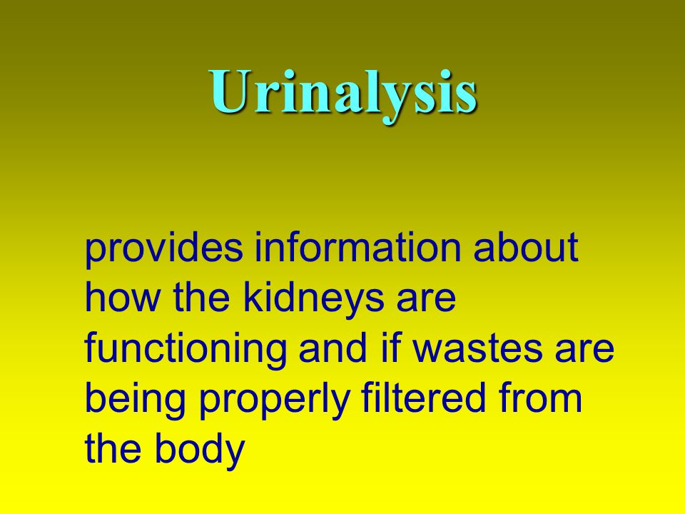 Urinalysis provides information about how the kidneys are functioning and if wastes are being properly filtered from the body