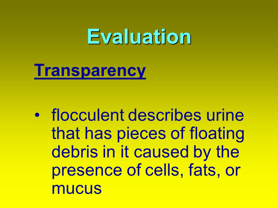 Evaluation Transparency flocculent describes urine that has pieces of floating debris in it caused by the presence of cells, fats, or mucus