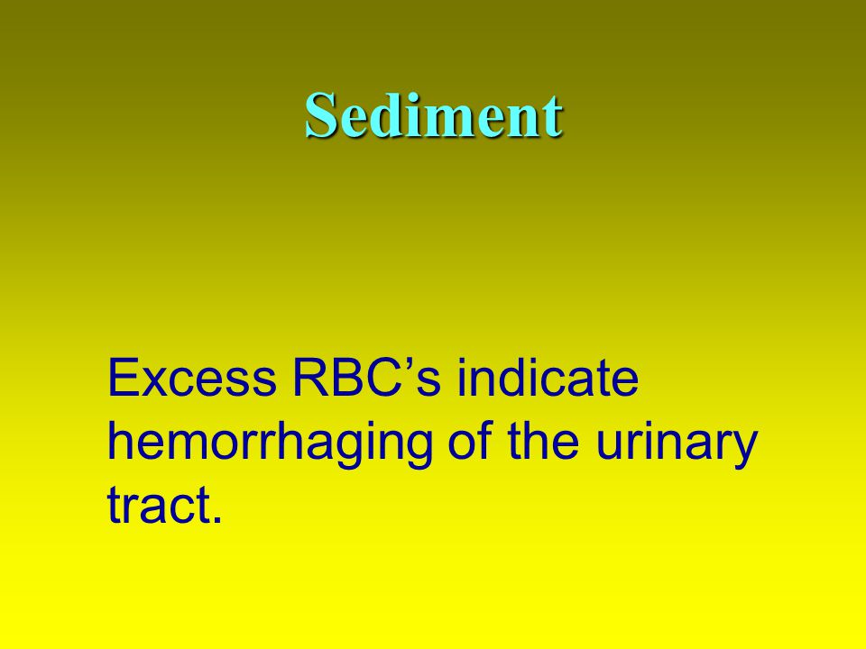 Sediment Excess RBC's indicate hemorrhaging of the urinary tract.
