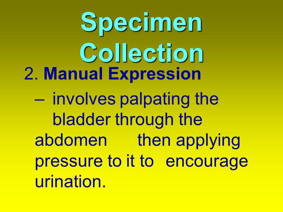 Specimen Collection 2.