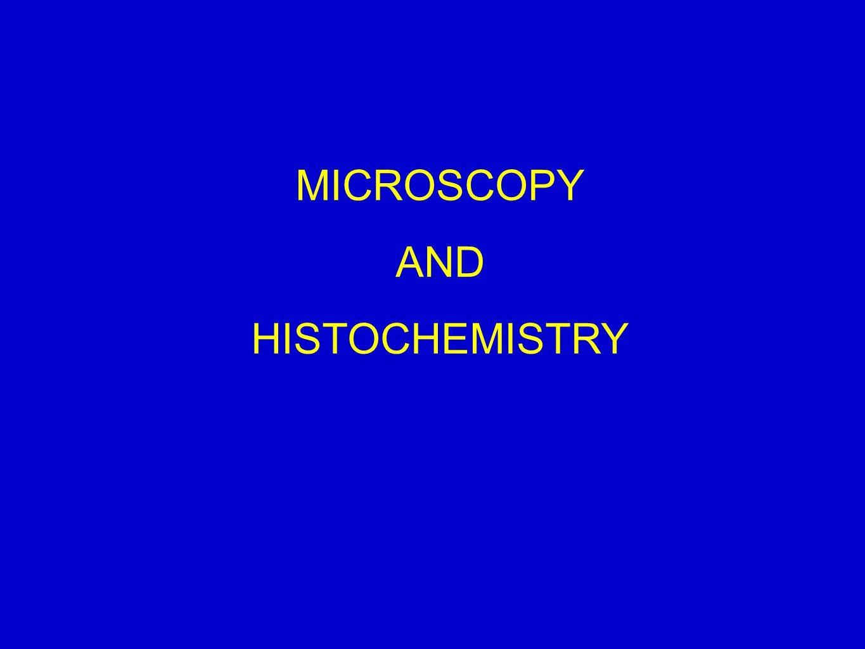 MICROSCOPY AND HISTOCHEMISTRY